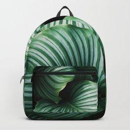 Leaves by Ren Ran Backpack