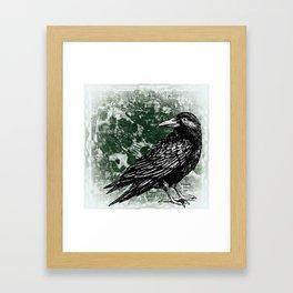 Raven - Reflection Framed Art Print