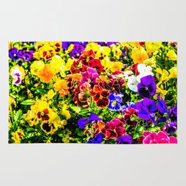 Viola Tricolor Pansy Flowers Rug