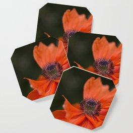 Poppyqueen Poppy Flower Flowers Poppies Coaster
