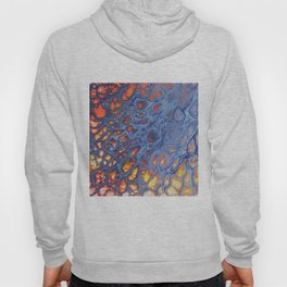 Dragon Scale Hoody