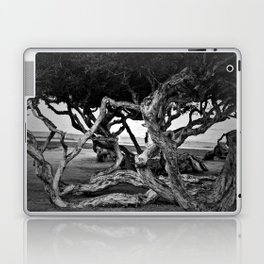 Curvy trees in the park Laptop & iPad Skin