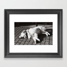 Happy sleeping dog Framed Art Print