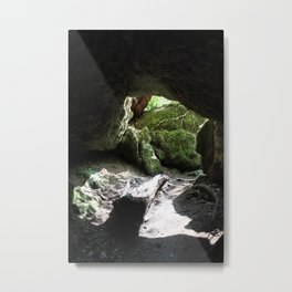 Out Towards the Woods Metal Print