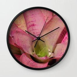 Pink Plant Wall Clock