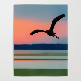 Seagull Sunset Abstract Poster