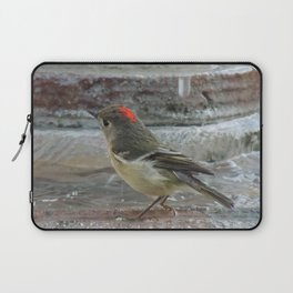 Ruby-Crowned Kinglet At The Fountain Laptop Sleeve