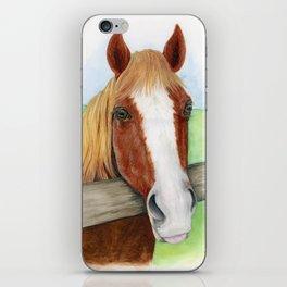 Cinnamon Horse Watercolor iPhone Skin