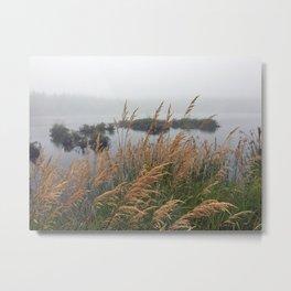 Acadia Pond Metal Print