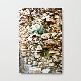 Wall Pattern II Metal Print
