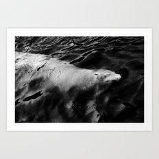 Waterglider Art Print