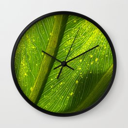 Spotted Leaf Wall Clock