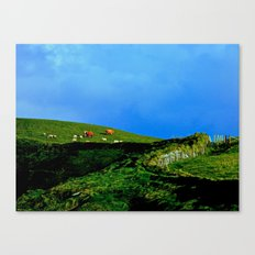 The Rolling Hills of County Clare Canvas Print