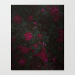 Dark Roses Canvas Print