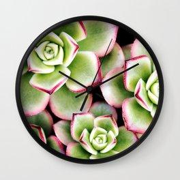 Taffy Succulents Wall Clock
