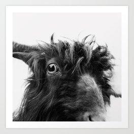 charlie the goat Art Print