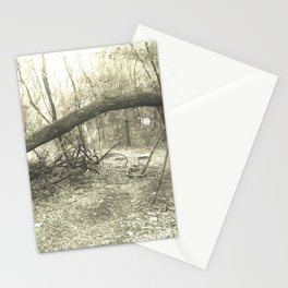 Old Tree Stationery Cards