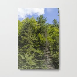 The Flume 11 Metal Print