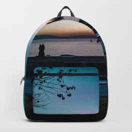 SwissLake Friend Backpack
