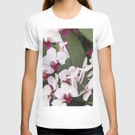 Longwood Gardens Orchid Extravaganza 1 T-shirt