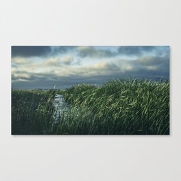 Be Still. Canvas Print