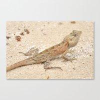 lizard Canvas Prints featuring Lizard by Bonjourik