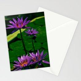 Purple Lily at Jeju Island Stationery Cards