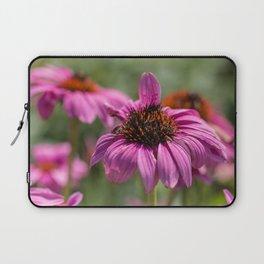 Pink Rudbeckia flower in summer garden Laptop Sleeve