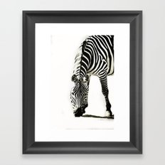 Zebra - paint Framed Art Print