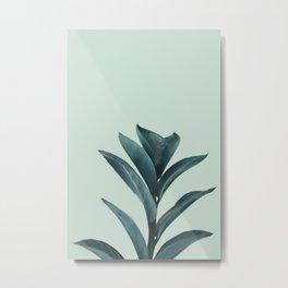 Teal Mint Plant Metal Print