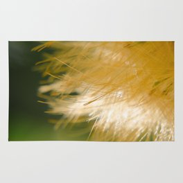 Golden Wispy over green Rug