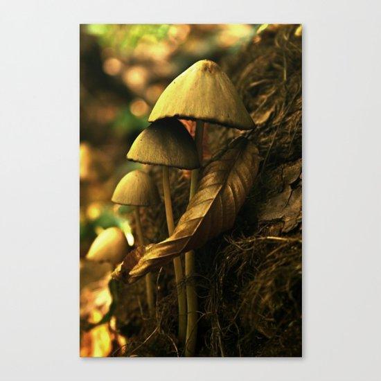 Magic mushroom family Canvas Print