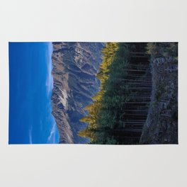 Arch of Larch Rug