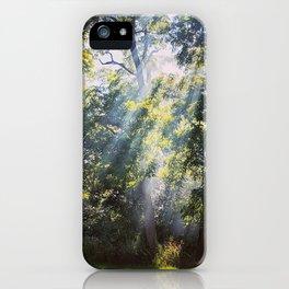 God Rays Shining Down Through The Treeline iPhone Case