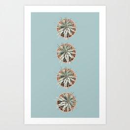 4 cactus print Art Print