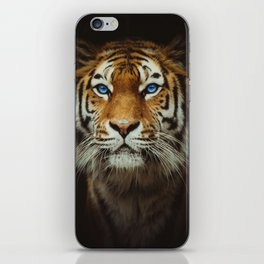 Wild Tiger with Blue eyes iPhone Skin