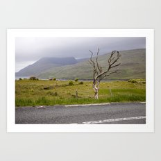 Dried Tree Art Print