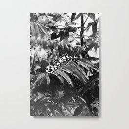 Catipillar Metal Print
