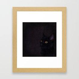 Black Cat - Prince Of Darkness Framed Art Print