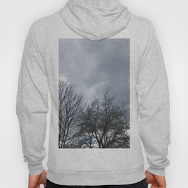 Winter Sky, Cloudy Winter Sky, Beautiful Clouds and Trees Hoody