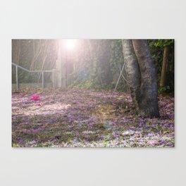 Pink slips Canvas Print