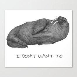 I Don't Want To   Lazy Walrus Canvas Print