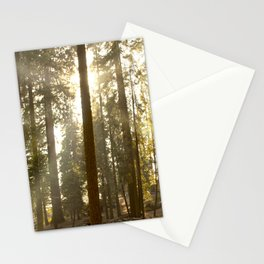 Divided Shine Stationery Cards