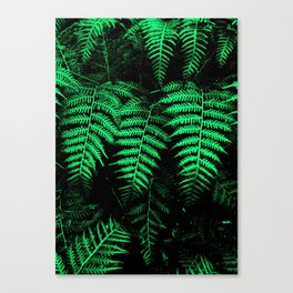 Emerald Triplets Canvas Print