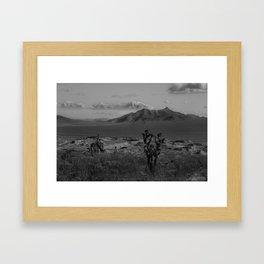 Joshua Tree Death Valley Framed Art Print