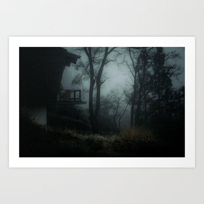 Fog in the woods Art Print