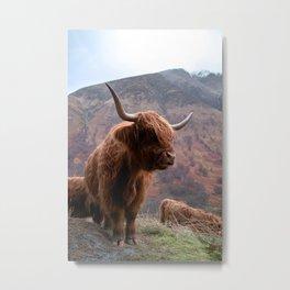 Highlander - I Metal Print