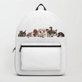 Cute Pet Panorama Backpack