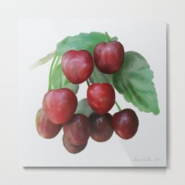 Sour Cherry, watercollor Metal Print