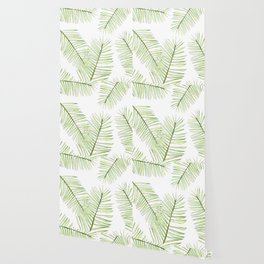 palm areca - white background  Wallpaper